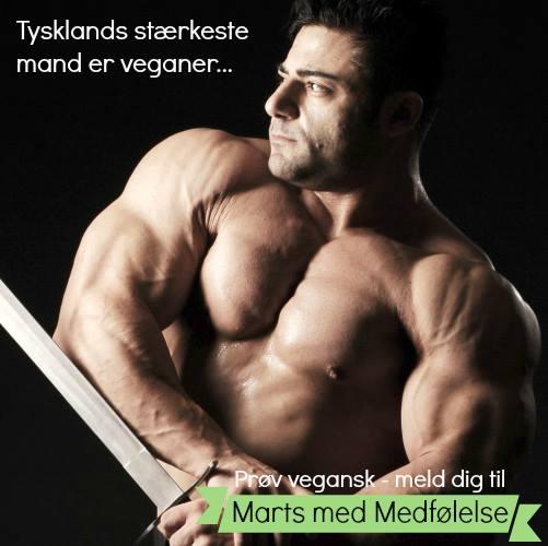 Stærkeste mand
